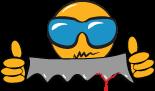 LogoPola
